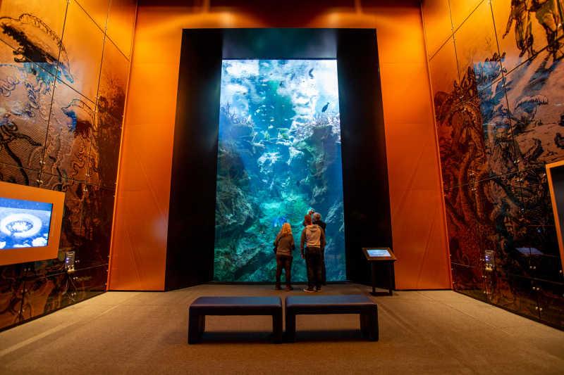 la cite de la mer l'ocean du futur