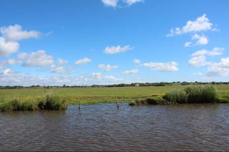 paysage marais cotentin